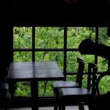 雨の日のガレージ・カフェ