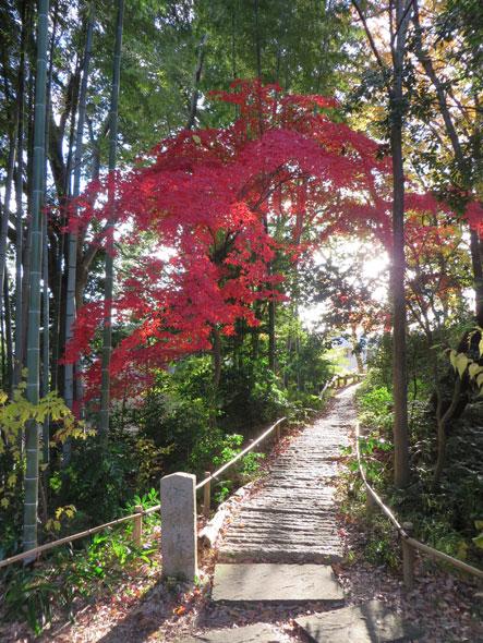 武相荘の紅葉