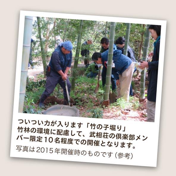 武相荘の竹の子堀り