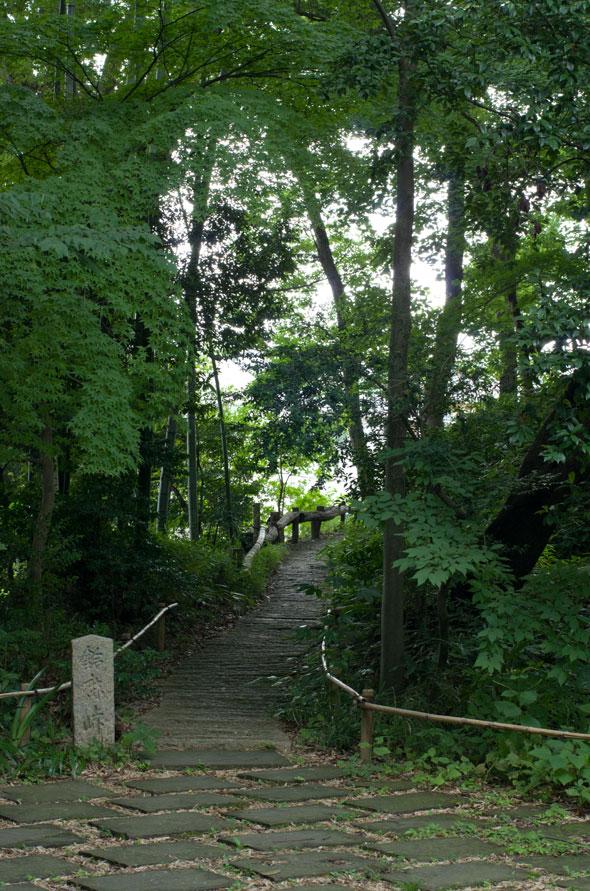武相荘 森の入り口