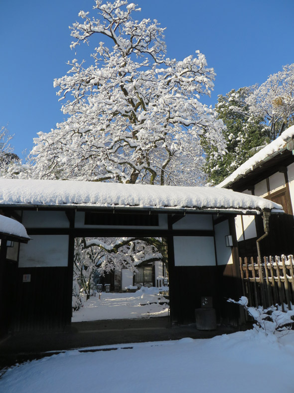 大雪の日が開けて1月23日
