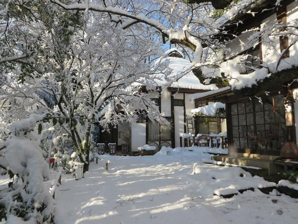 大雪、開けて1月23日