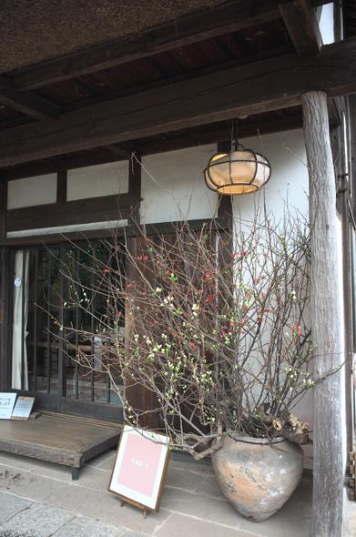 海上がりの大壺 紅白の木瓜 武相荘
